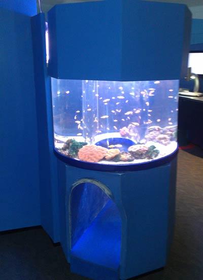 Custom-Aquaculture-Display-Tanks-3