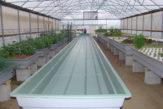 Long-Length-Aquaponics-Grow-Bed